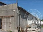 Immagine di FALL. 156/2014 CUSTODIA: FABBRICATO AD USO LABORATORIO SITUATO IN COMUNE DI PIETRASANTA (LU), LOCALITA' DELLA PORTONE, VIA AURELIA, KM. 365.