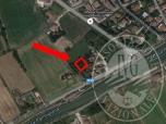 Immagine di Lotto 1I - MOGLIA - Lotto edificabile in area urbanizzata