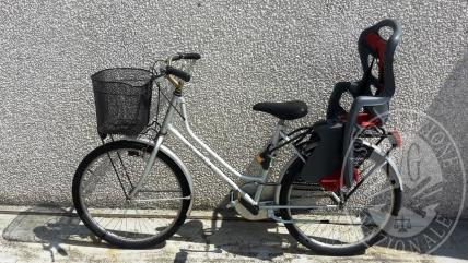 Bicicletta da donna di colore grigio marca WEGA BIKE
